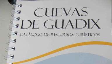 Guadix, accitania