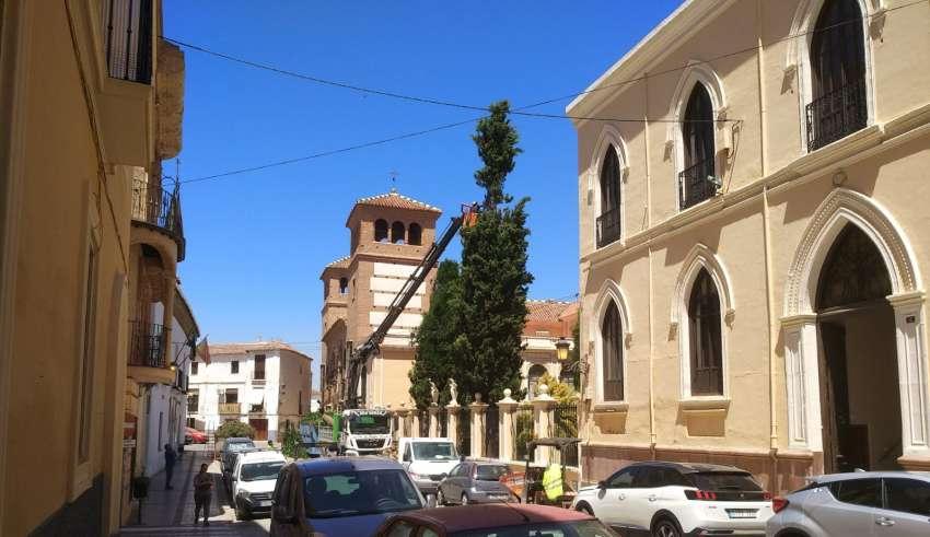 Accitania, Guadix