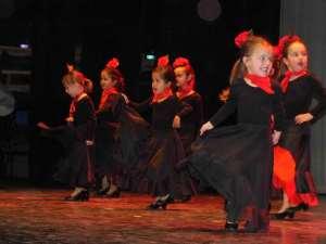 Flamenco en EMM copia