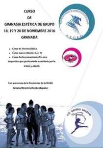 guadix gimnasia estetica de grupo copia